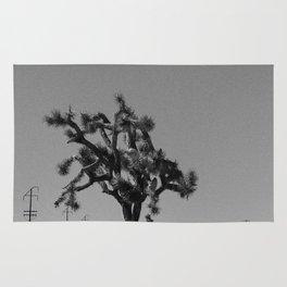 Joshua Tree Mailboxes Black and White Rug