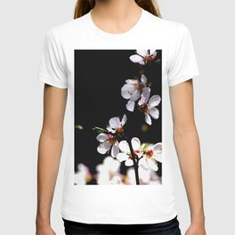 Stunning Japanese Apricot Flowers Against The Black Background T-shirt