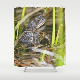 Toad in the pond Shower Curtain