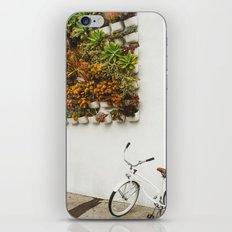 San Diego Sidewalk iPhone & iPod Skin