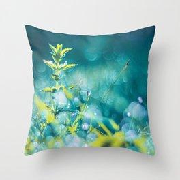 Crystal Fairies Throw Pillow