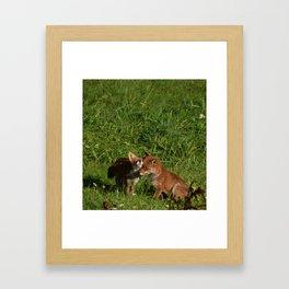 Mr & Mrs Fox Framed Art Print