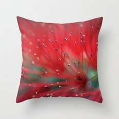 Callistemon macro 2413 Throw Pillow