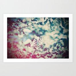 Butterfly motions Art Print