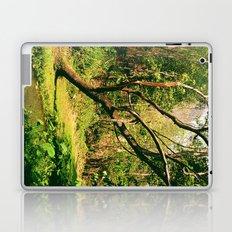 Wang Madcha Creek Laptop & iPad Skin