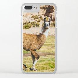 Curious llama in Bolivia Clear iPhone Case