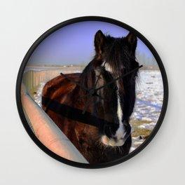 Mahogany Bay Draft Horse Wall Clock