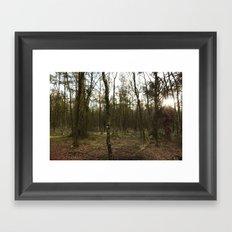 Sun Glimmer Framed Art Print