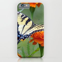 Eastern Yellow Tiger Swallowtail iPhone Case