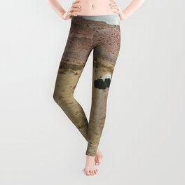 Lama Pampa bolivie Leggings