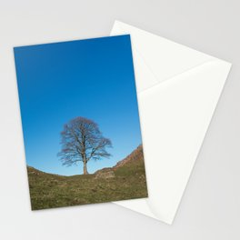 Sycamore Tree in Hadrian's Wall Stationery Cards