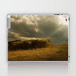 Sunset on China Berry Trees Laptop & iPad Skin