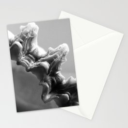 B&W Shell Edge Stationery Cards