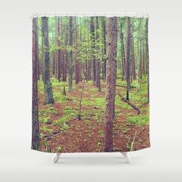 Songbird Trail Pine Grove Shower Curtain