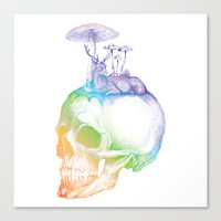 mushroom Canvas Prints featuring Mushroom by dogooder