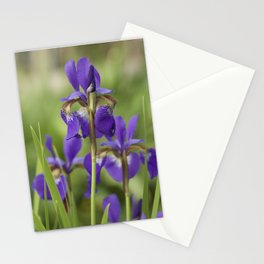 Purple Iris Stationery Cards
