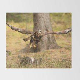 Common Buzzard Throw Blanket