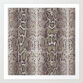Snake Skin Art Print