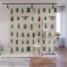 Insects, flies, ants, bugs Wall Mural