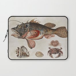 Vintage Fish and Crab Illustration by Maria Sibylla Merian, 1717 Laptop Sleeve
