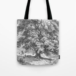 Linden Tree Print from 1800's Encyclopedia Tote Bag
