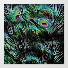 Soft and Fluffy Colorful Peacock Feathers Canvas Print