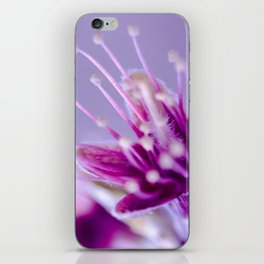 Purple Bloom iPhone Skin