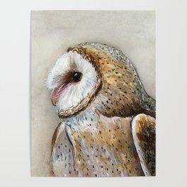Barn Owl Watercolor, Birds Of Prey Wild Animals Owls Poster