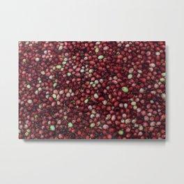 cranberry party2 Metal Print