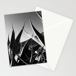 Maguey y Sotol. Stationery Cards