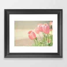 Tulip Love Framed Art Print