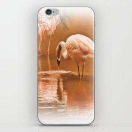 Painted Flamingoes iPhone Skin