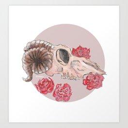 Sheep Skull WaterColor Art Print