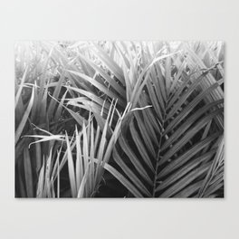 welcome to the jungle 2 Canvas Print