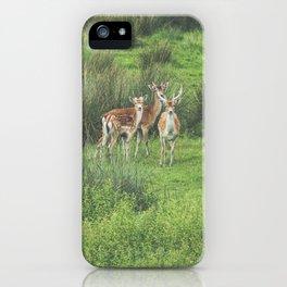 Oh my Deers! iPhone Case