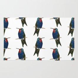 Blue-tufted Starthroat Rug