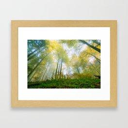 Interlude v2 Framed Art Print