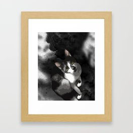 Gypsy Da Fleuky Cat and the Black Starry Night Framed Art Print