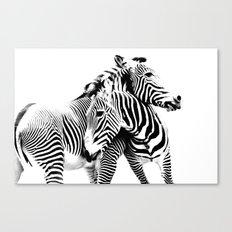Grevy's Zebras Canvas Print