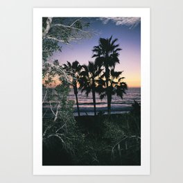 Palms Staring Art Print