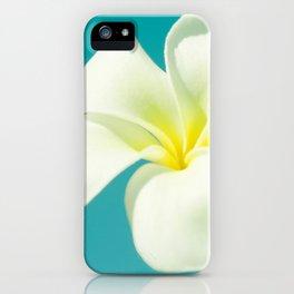 pua melia pakahikahi : flowers in the sky iPhone Case