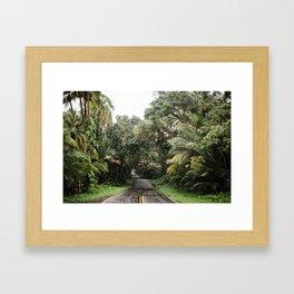 Hawaii Roads Framed Art Print