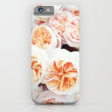 Garden Roses iPhone 6s Slim Case