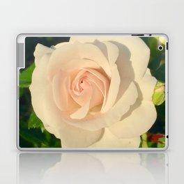 Lighten Laptop & iPad Skin