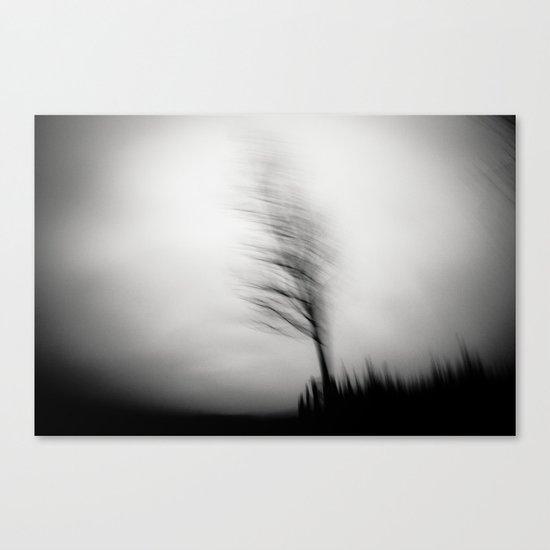 shadow dancer Canvas Print