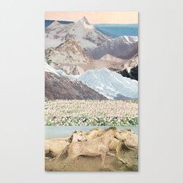 Washes Canvas Print