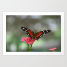Butterfly House 2 Art Print