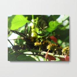 Flutter. Metal Print
