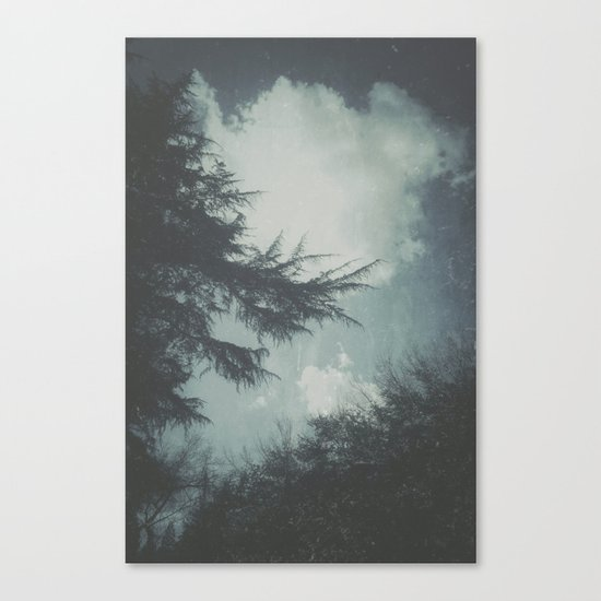 On Cool Days Canvas Print