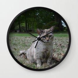 Clawdia cat Wall Clock